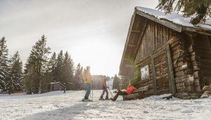 Lyžovanie v Dolnom Rakúsku