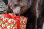 Vianoce s netradičnými darčekmi v ZOO