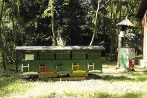 Včelárska Paseka