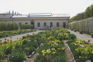 Kvetná záhrada