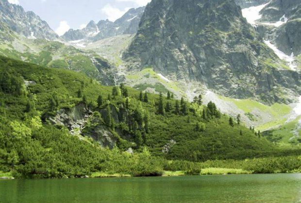 Štátne lesy TANAPu Čierne Pleso