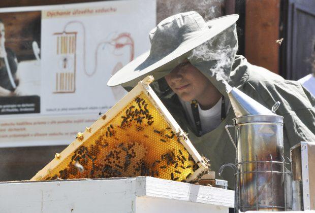 stretnutie včelárov
