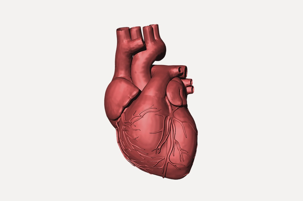 Deň srdca MOST