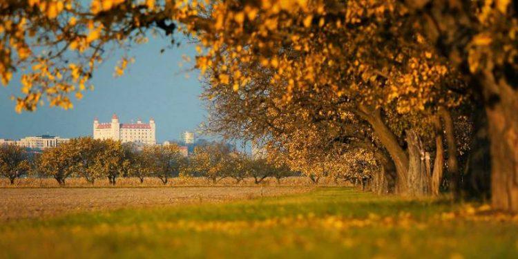 Jesen v Bratislave