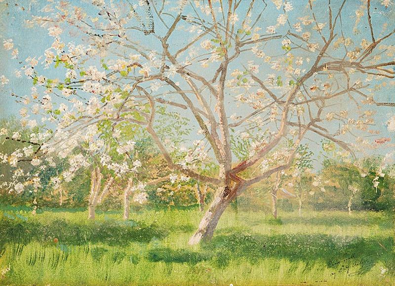 Ladislav Mednyánszky, Štúdia rozkvitnutých stromov v sade