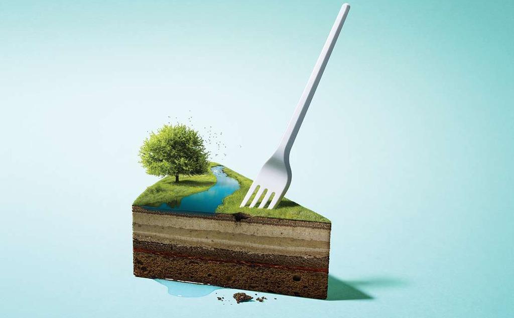 Koniec jednorazoveho plastoveho riadu, Kaufland