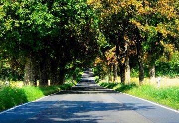 Rezortu dopravy a výstavby záleží na zelených opatreniach