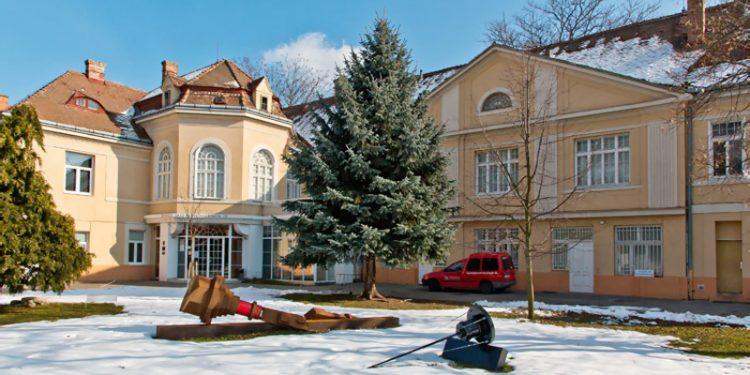 Galéria Jána Koniarka v Trnave, Výstava Dobrodružná situácia maliarky Lucie Vesele