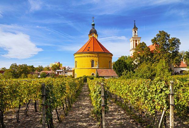 Malokarpatská vínna cesta