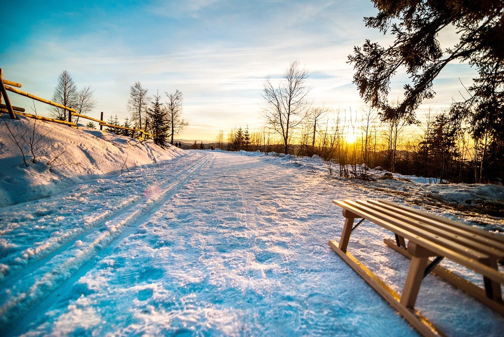 Adrenalínové zimné zážitky, sankovanie
