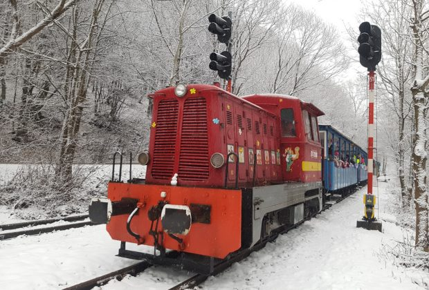 Fašiangové víno a domácu zabíjačku na Tokaji vlakom z Košíc