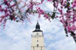 Mestská veža Trnava a jej hodiny