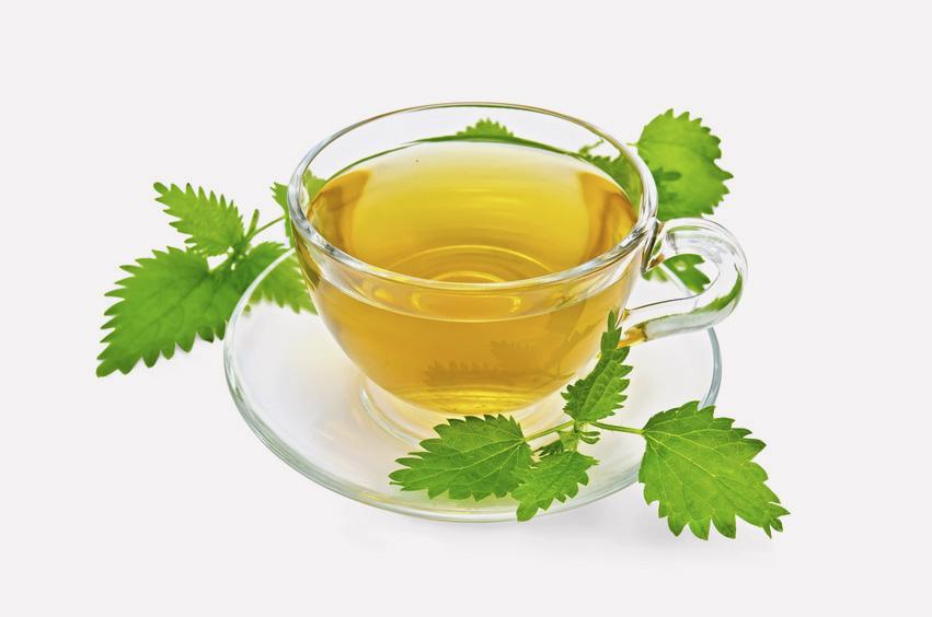 Žihľava dvojdomá čaj proti jarnej unave