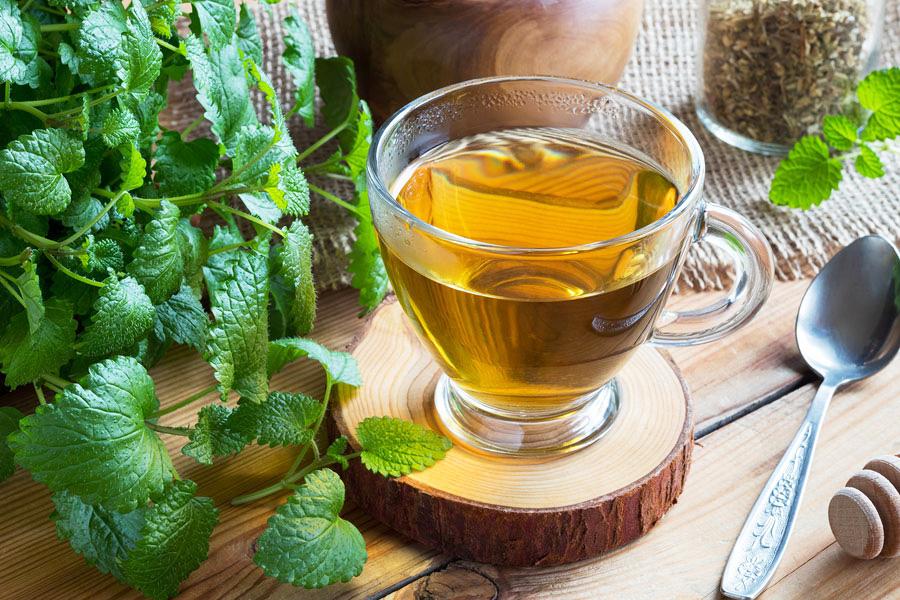 Medovka lekárska Bylinný čaj proti jarnej unave