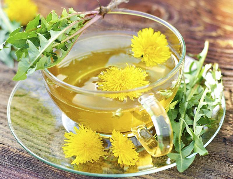 Púpava lekárska čaj proti jarnej unave_2