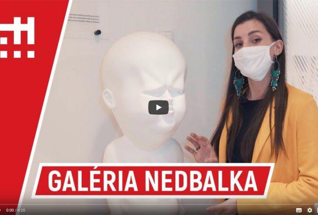 Galéria Nedbalka slovenský Guggenheim