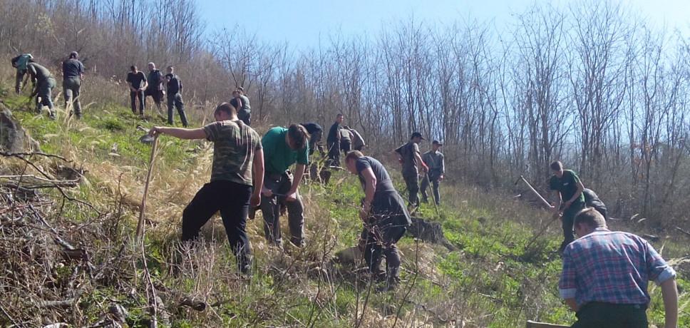 Stredná odborná škola lesnícka vBanskej Štiavnici, zalasnovanie