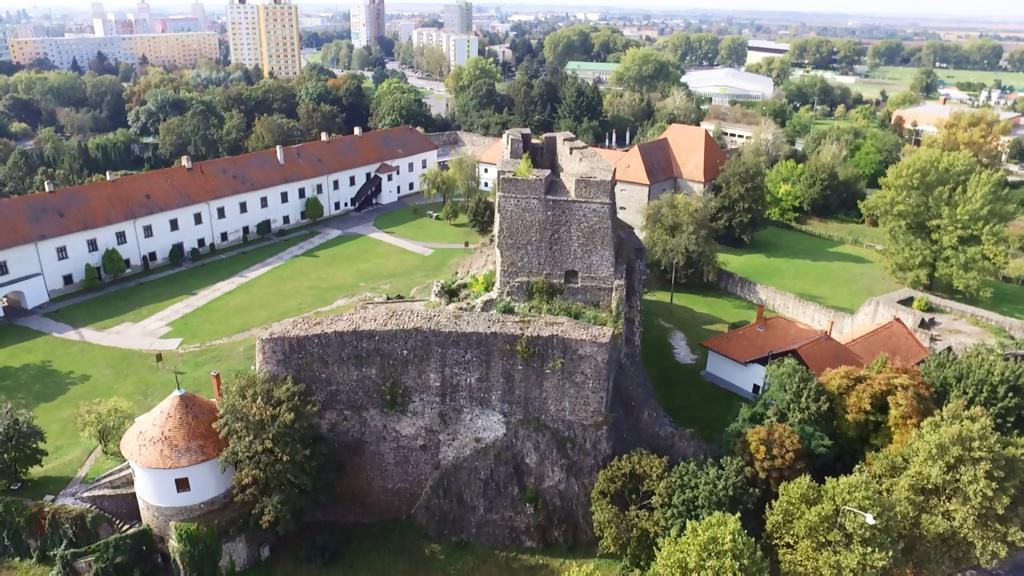 Tekov - Kraj na Pohroní, Levický hrad