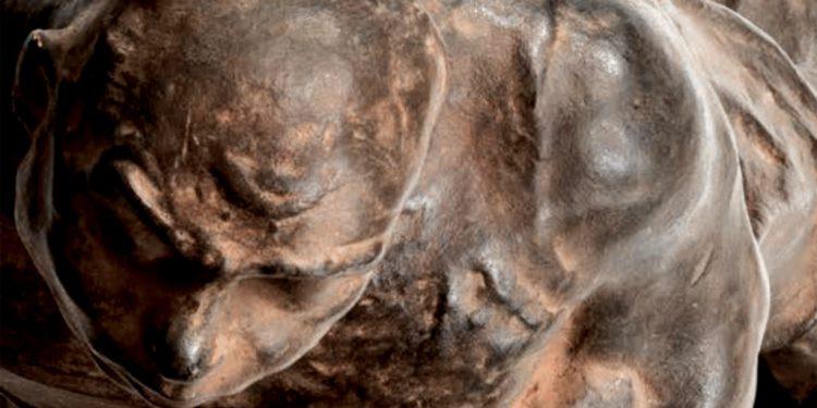 Koniarek u Löfflera a odhalené artefakty depozitára v múzeu v Košiciach