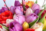 Poradíme vám niekoľko darčekov pre vaše mamy na Deň matiek