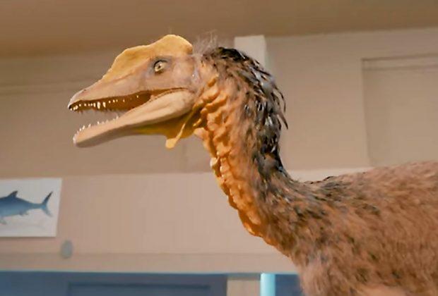 Prírodovedné múzeum – objavte kosti dinosaurov v centre mesta Bratislavy