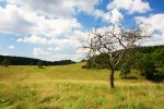 7 jedinečnosti východného Slovenska, Silická planina lúka pri Dievčenskej skale
