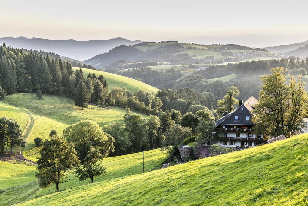 Stanú sa veľké cestovateľské sny opäť realitou Ohlas vo svete zaznamenala kampaň #DiscoverGermanyFromHome, St. Peter_St._Peter_N+Ąhe_Reinerhof
