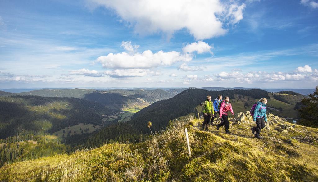 Stanú sa veľké cestovateľské sny opäť realitou Ohlas vo svete zaznamenala kampaň #DiscoverGermanyFromHomeBernau im Schwarzwald_Hochschwarzwald_Berg_Herzogenhorn