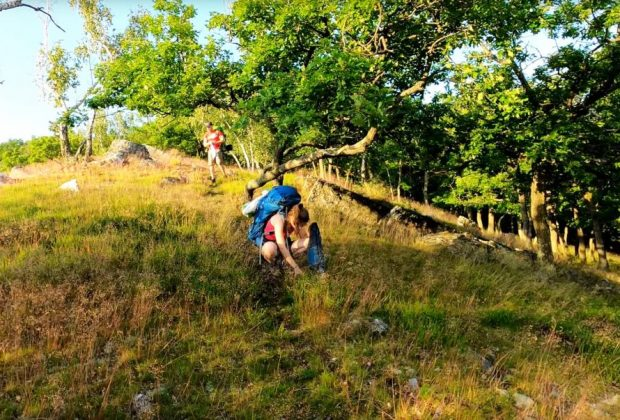 Bivak na vrchu DRŽA v pohorí Tribeč