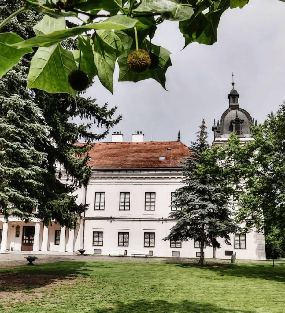 Detský tábor Kaštieľkovo 2020