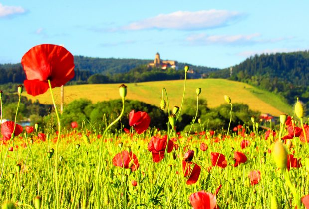 Otvorenie sezóny na hrade Ľubovňa 2020
