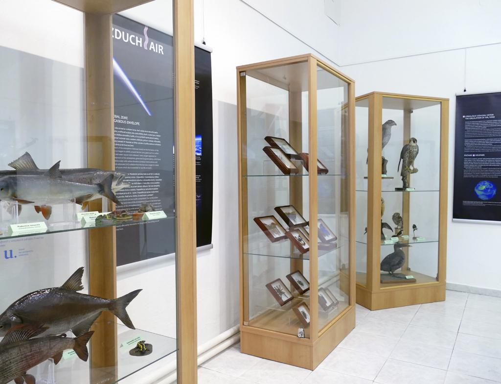 Environmetálna výstava v Tribečskom múzeu – Zem, miesto pre život – nespútané živly