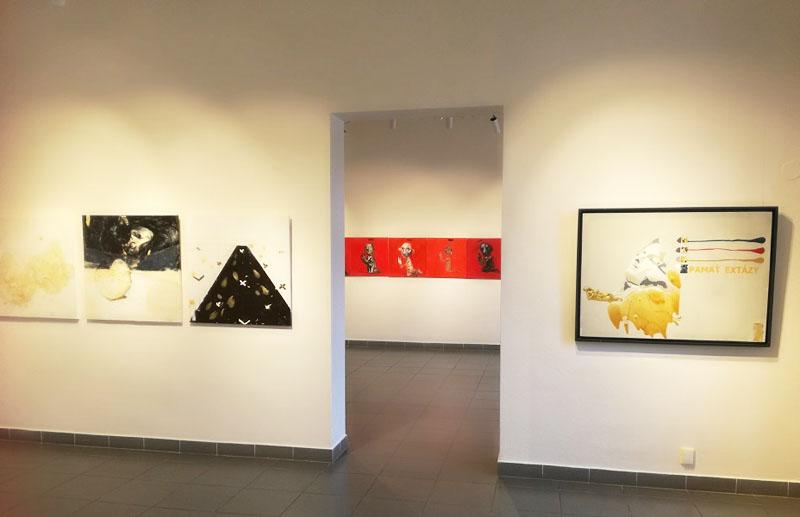 Plusy a mínusy akvizičnej činnosti Rezervované pre budúcnosť II, pohľad do výstavnej siene, Vernisáž výstav v Oravskej galerii