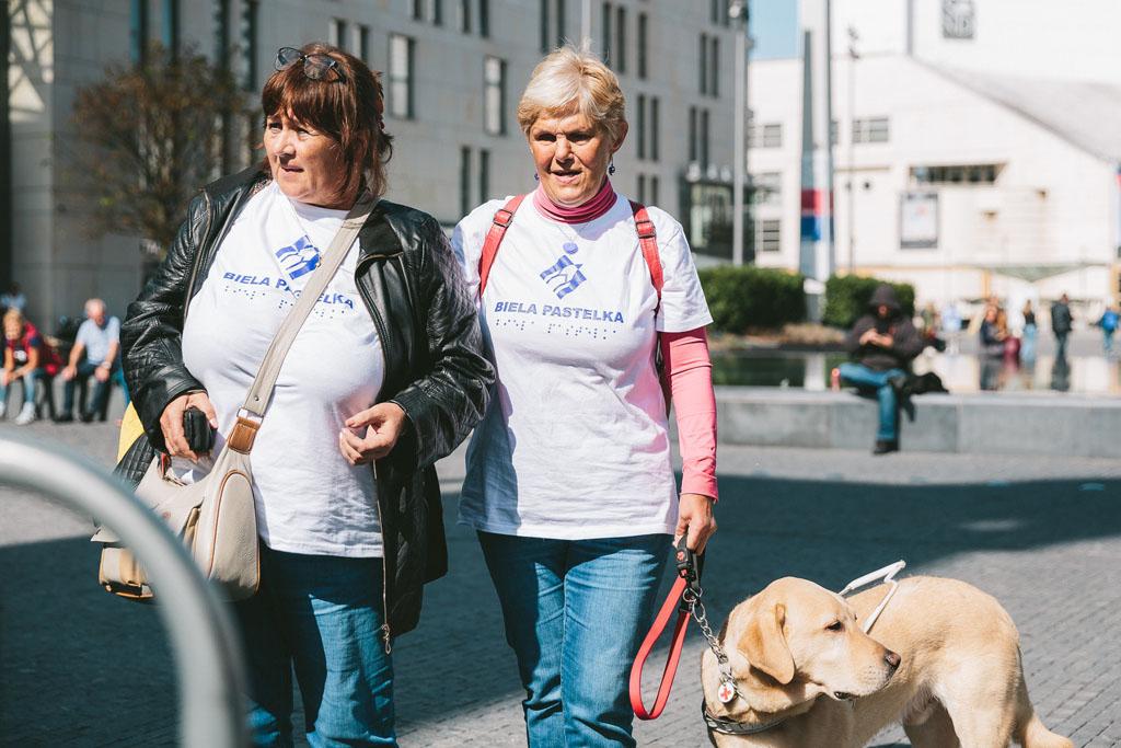 Verejná zbierka Biela pastelka 2020, Adela Vinczeova a Robo Roth, zbiera podpora zrakovo postihnuty, Dobrovolnikmi su aj nevidiaci