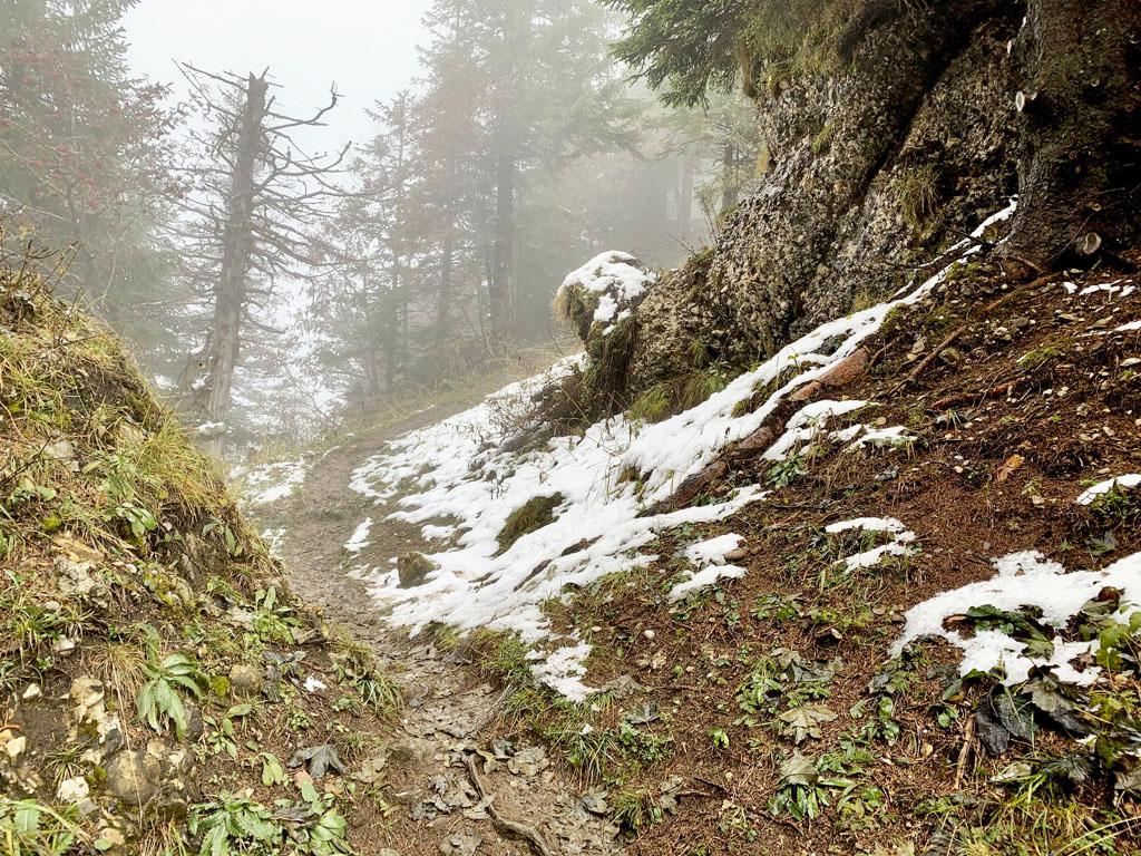 Hirzli - sneh, blato, reťaze a 3-hodinové kolečko s prevýšením okolo 700 m, Zahorak na cestach