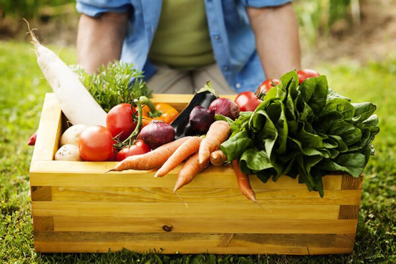 Jarná únava, zelenina, vitaminy