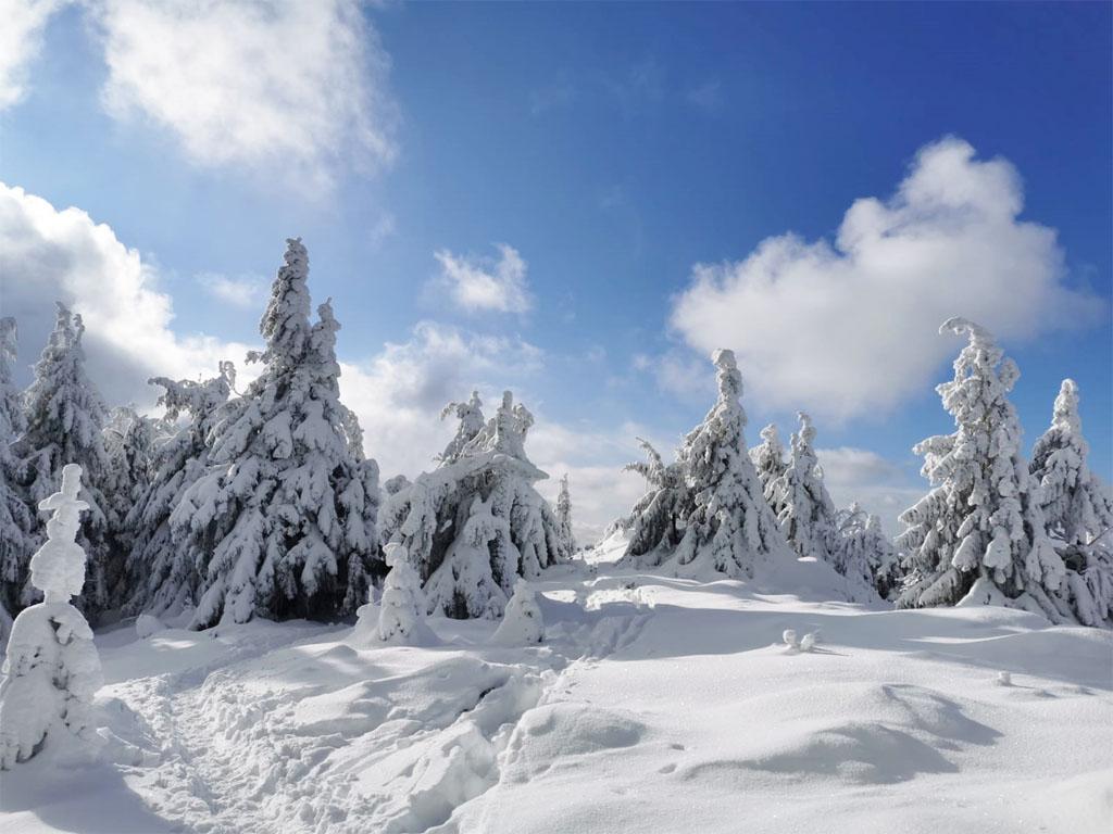 zimný výlet, turistika