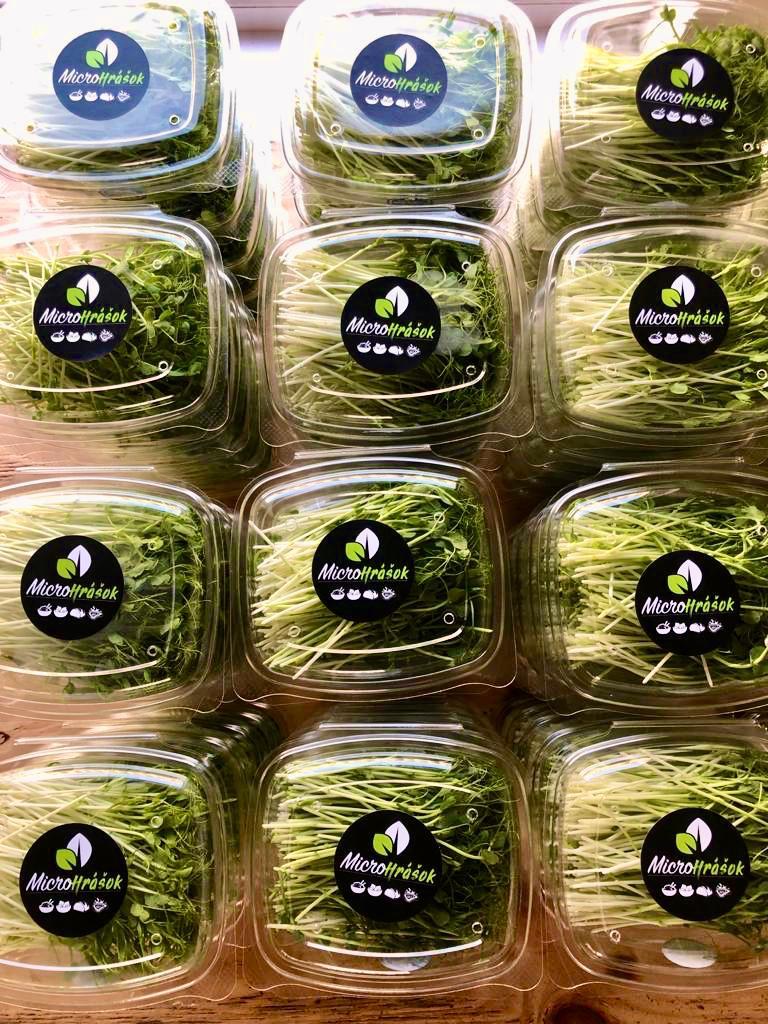 Microgreens Slovakia, mikrozeleniny