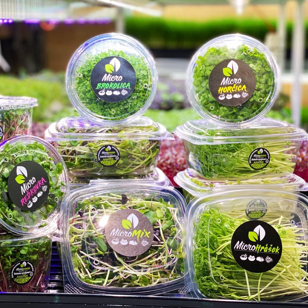 Microgreens Slovakia, mikrorastliny