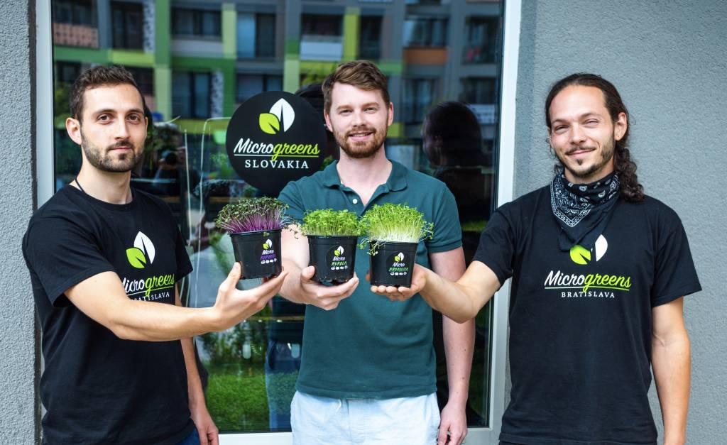 Microgreens Slovakia, mikrorastliny,