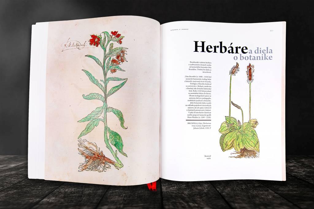 SNK humanizmus a renesancia atlas, herbár, knihy, informácie o Slovensku, zdravie, kultúra, tradície, regióny