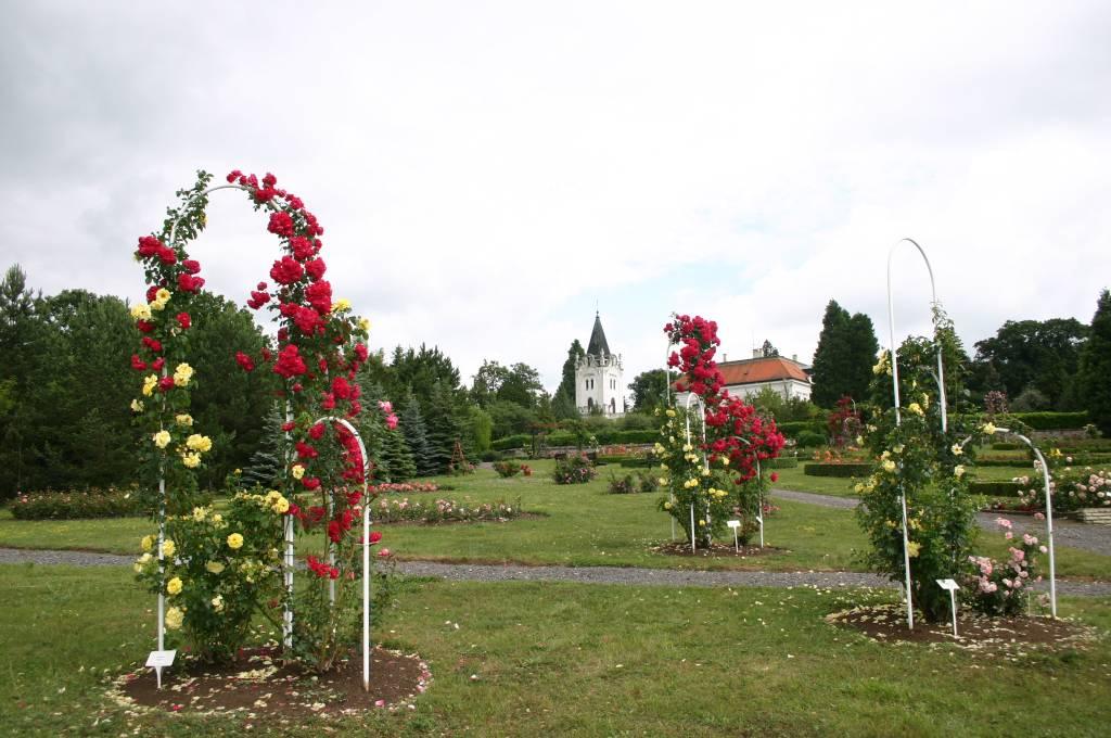 Arborétum Mlyňany, informácie o Slovensku, cestovanie, kultúra, tradície, enviro, regióny