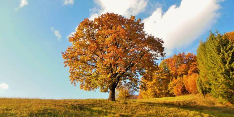 Jeseň v Trenčianskom kraji